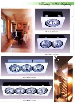 Halogen Downlight